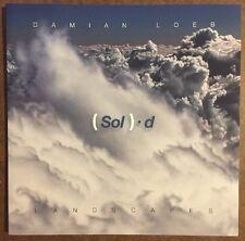 DAMIAN LOEB:(Sol) . d  LANDSCAPES, Acquavella Galleries Feb.28-April 11,  2014