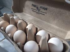 Silkie Hatching Bantam Chicken Eggs 6+ (CURRENTLY UNAVAILABLE UNTIL OCTOBER)