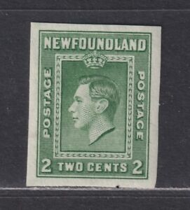 Newfoundland Canada Scott 245a VF MH 1938 2¢ Green King George VI Imperf Single