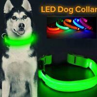 Dog Collar LED Light up Pet Night Safety Bright Flashing Adjustable Nylon Leash