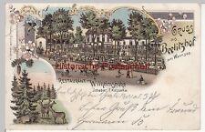 (110597) AK Berlin, Beelitzhof am Wannsee, Restaurant Wilhelmshöhe, Litho 1900