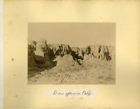 Algérie, Lit d'un affluent du Cheliff Vintage albumen print.  Tirage albu