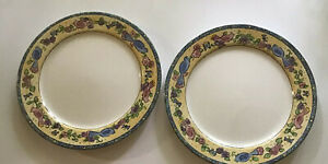2 Sango BIRDS AND THE BEES 3042 Dinner Plates 11 Inches - Sue Zipkin