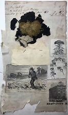 19th Century MOSS FUNGI Mushroom BOTANY Sample Specimen HERMITS Cave ERVING MA