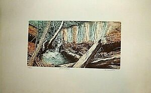 """M. BUODEN """"BEAVER POND""""  LITHOGRAPH PRINT 13 X 21 INCHES PENCIL S/N"""