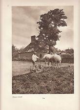 """PHOTO original """"visage de la france"""" environ 1920 17 cm x 23 cm FERMIER NORMAND"""