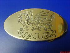 Colore argento Drago Gallese Galles Cintura Fibbia Lucidato Alluminio CNC INCISA