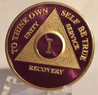 Purple & Gold Plated Any Year AA Chip Alcoholics Anonymous Medallion Coin Plate