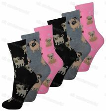 Ladies Womens Socks 3 Pairs Animals Dog Design Novelty Adults 4-6.5.....Option 6