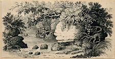 Original, Vintage RIVER SCENE Wood Engraving by Thomas Bewick, ca. 1800-1850