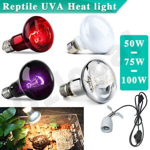 50W/75W/100W REPTILE HEAT LIGHT UVA Bulb Day Night Amphibian Snake Lamp Infrared
