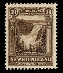 #182 Newfoundland Canada mint  well centered