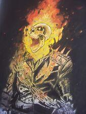 Ghost Rider, escudo, 30x12 pulgadas pintura al óleo, Spiderman, Blade, los Vengadores Iron Man