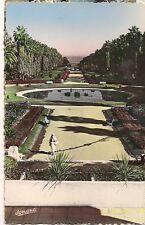 algerie , alger , le jardin d'essai  ......