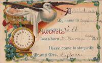 Postcard Birth Announcement Stork 1899