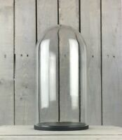 Large Glass Dome Cover Cloche Display With Black Wooden Base Height 46 cm