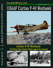Curtiss P-40 Warhawk USAF Fighter Plane AVG Flying Tiger Japanese Zero Dogfight