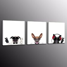 Animals Glasses Mr. Dog Canvas Print Art Painting Poster Wall Home Decor 3pcs