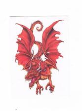 1 x beautiful dragon Temporary Tattoo - Stunning design - Suits Kids or Adults