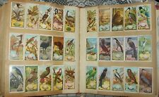 VINTAGE 1930's SCRAPBOOK 218 cigarette cards + labels, cutouts, etc (glued in)