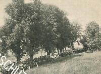 Fronleichnam in Gmund am Tegernsee - um 1914 - Prozession im Felde