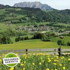 5 Tage Urlaub Erholung Hotel Stocker 3* inkl. HP Steiermark Schladming Dachstein