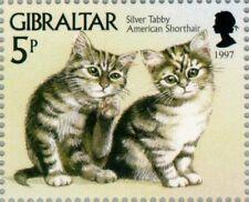 Gibraltar -1997- Silver Tabby American Short Hair Kittens - Mnh Stamp - Mi. #787
