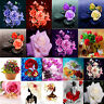 DIY 5D Diamond Painting Flowers Needlework Cross Stitch Art Craft Kit Home Decor