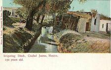 Vintage Postcard Irrigating Ditch Ciudad Juarez Chihuahua Mexico