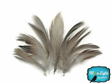 1 Pack - NATURAL Barred Mallard Duck Flank Feathers 0.10 oz. Fly Tying
