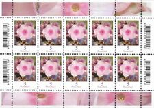 Bund Mi.Nr. 3296** (2017) postfrisch (Kleinbogen)/Blumen (Phlox)