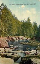 North Woodstock New Hampshire~Agassiz Basin Rock Freaks~1910 Postcard