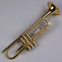 YAMAHA Bb Standard Trumpet YTR-3335 with Case EMS w/ Tracking NEW