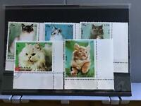 Sharjah Cats stamps R25428