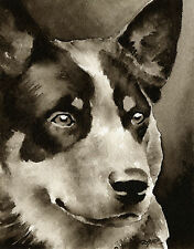 Australian Cattle Dog Art Print Sepia Watercolor Painting by Artist Djr
