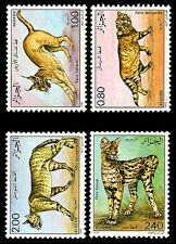 ALGERIA. Wildcats. Fauna. Animals. 1986. Scott 801-804. MNH (1)