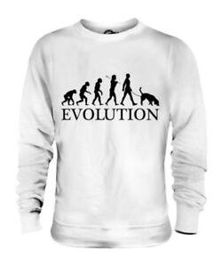 BLOODHOUND EVOLUTION OF MAN UNISEX SWEATER MENS WOMENS LADIES DOG LOVER GIFT
