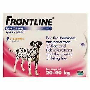 Frontline Spot On Large Dog 20-40kg (6Pipettes) - 20051