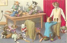 Mainzer Hartung Postcard 4894 Tailor Fits Dressed Cat for Suit, Menswear