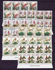 Zimbabwe 2004 Aloes Imprint Blocks, MNH (sheet margin)
