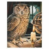 OWL CANVAS 'THE ASTROLOGER' BY LISA PARKER WISDOM MYTHICAL WALL ART