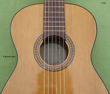 Kinder-Gitarre 1/2 - 3/4 Größe Calvin Crämer by Musima MS1 Fichte massiv  Top!
