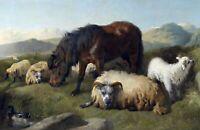 Goat, Sheep and Pony English  Richard Ansdell. Canvas Pets Art. 11x17 Print