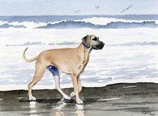 GREAT DANE AT BEACH Watercolor OVERSIZED ART Print DJR