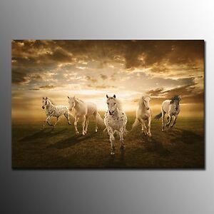 FRAMED Animal Canvas Prints Poster Horses Painting Picture Wall Art Home Decor