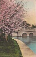 Postcard Francis Scott Key Bridge Potomac Park Washington DC 1935