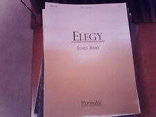 James Biery: Elegy, organ (MorningStar)