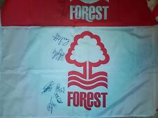 Nottingham Forest Mano Bandera Firmada B X16 Aftal Coa Fútbol