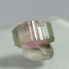 2.65ct Watermelon Tourmaline Crystal Gem Mineral Paich Valley Afghanistan Slice