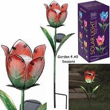 Rosso Verde Tulipano Fiore Solare Luce Giardino Paletto Creekwood Regal Art & Gift Boxed